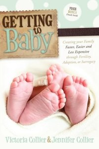 Getting to Baby: Creating Your Family Faster, Easier and Less Ex