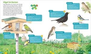 BOOKii® Hören und Staunen Heimische Vögel