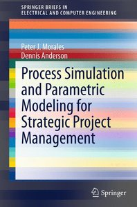 Process Simulation and Parametric Modeling for Strategic Project