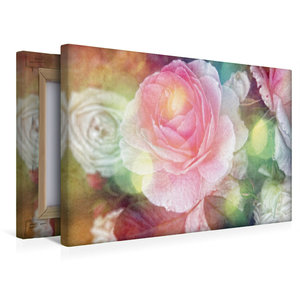Premium Textil-Leinwand 45 cm x 30 cm quer Vintage Rose