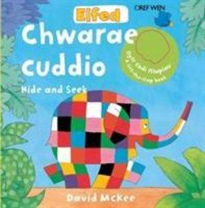Elfed Yn Chwarae Cuddio/Elfed Hide and Seek