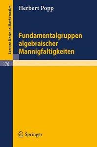 Fundamentalgruppen algebraischer Mannigfaltigkeiten