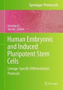 Human Embryonic and Induced Pluripotent Stem Cells