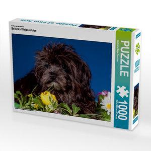 Ein Motiv aus dem Kalender Bolonka Welpenstube 1000 Teile Puzzle