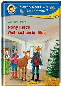 Pony Fleck - Weihnachten im Stall