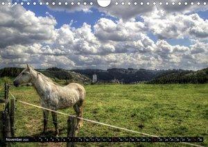 Faszination Eifel