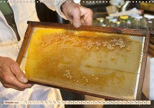 Die Welt der Imkerei: Blüten, Bienen, Honig