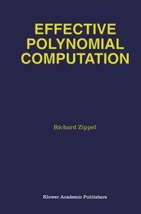 Effective Polynomial Computation
