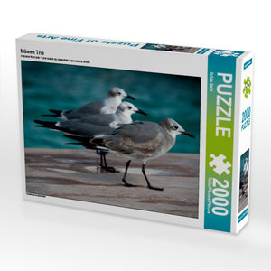 Möwen Trio 2000 Teile Puzzle quer