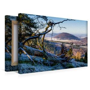 Premium Textil-Leinwand 45 cm x 30 cm quer Wachholderheide im NS