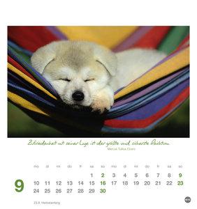 Ich wünsch dir... Gelassenheit 2018 Postkartenkalender