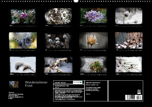 Wunderschöner Frost (Wandkalender 2013 DIN A2 quer)