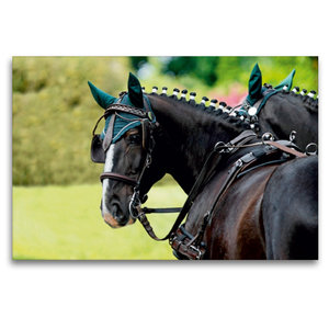 Premium Textil-Leinwand 120 cm x 80 cm quer Herrlicher Typ: Ulan