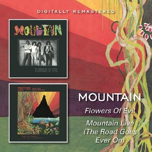 Flowers Of Evil/Mountain