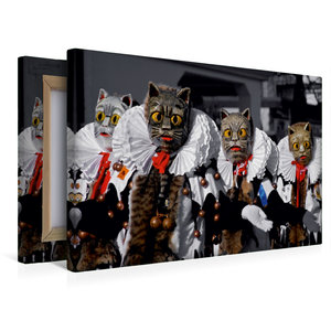 Premium Textil-Leinwand 45 cm x 30 cm quer Meßkircher Katze