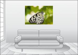 Premium Textil-Leinwand 120 cm x 80 cm quer Weiße Baumnymphe