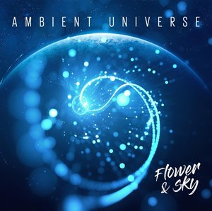 Ambient Universe