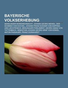 Bayerische Volkserhebung