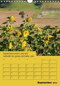 Wetter-Regeln der Bauern (Wandkalender 2018 DIN A4 hoch)