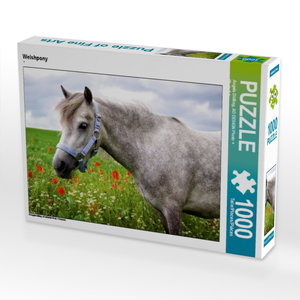 Welshpony 1000 Teile Puzzle quer