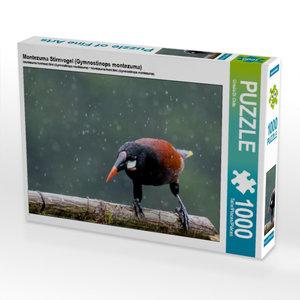 Montezuma Stirnvogel (Gymnostinops montezuma) 1000 Teile Puzzle