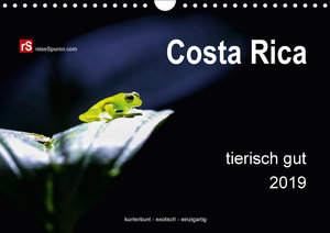 Costa Rica tierisch gut 2019