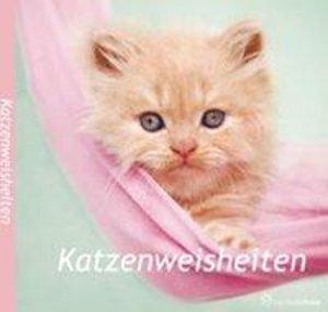 Katzenweisheiten