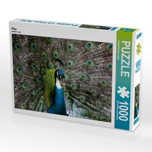 Pfau 1000 Teile Puzzle quer