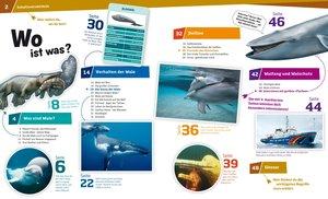Was ist Was 85 Wale und Delfine. Die sanften Riesen