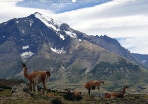 Wunderbares Patagonien (Posterbuch DIN A2 quer)
