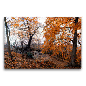 Premium Textil-Leinwand 75 cm x 50 cm quer Ruine Lauenburg