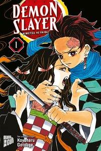 Demon Slayer. Bd.1