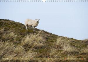 Schafe auf Deich und Düne (Wandkalender 2020 DIN A3 quer)