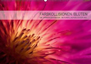 FARBKOLLISIONEN /BLÜTEN (Wandkalender 2019 DIN A2 quer)