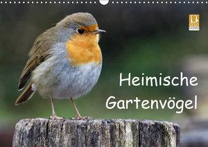Heimische Gartenvögel (Wandkalender 2019 DIN A3 quer)