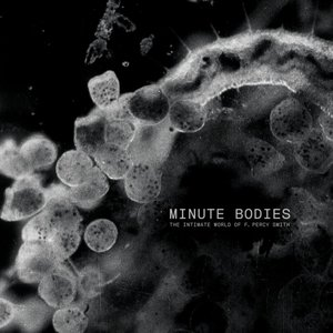 Minute Bodies (Limited Deluxe Edition)