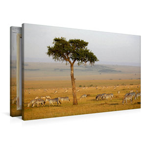 Premium Textil-Leinwand 90 cm x 60 cm quer Masai Mara NP, Kenia
