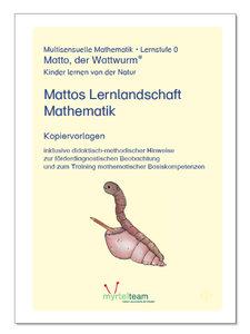 Mattos Lernlandschaft Mathematik (Kopiervorlagen)