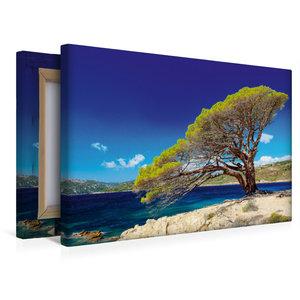 Premium Textil-Leinwand 45 cm x 30 cm quer Palombaggia