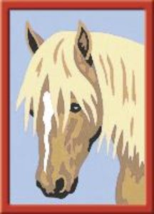 Haflinger Portrait. Malen nach Zahlen Serie F