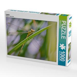 Libelle 1000 Teile Puzzle quer