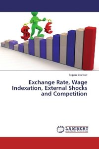 Exchange Rate, Wage Indexation, External Shocks and Competition