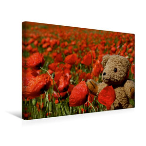 Premium Textil-Leinwand 45 cm x 30 cm quer Teddy KramBam im Mohn