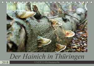 Der Hainich in Thüringen - UNESCO-Weltnaturerbe (Tischkalender 2