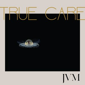 True Care (2LP-Black Vinyl+MP3)