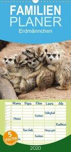 Erdmännchen - Familienplaner hoch