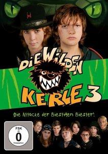 Die wilden Kerle 3 - Der Film, 1 DVD