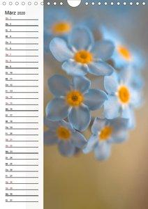 Blütenzauber in Blau