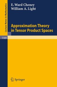 Approximation Theory in Tensor Product Spaces