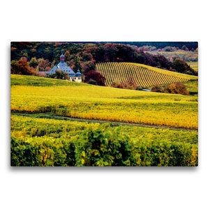 Premium Textil-Leinwand 75 cm x 50 cm quer Rheingau - Rieslingla
